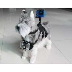 Arnés de Perro para GoPro y Cámaras Deportivas